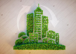 Green Campuses and Recycling: Sustainable Development by Youth International Forum at ITMO